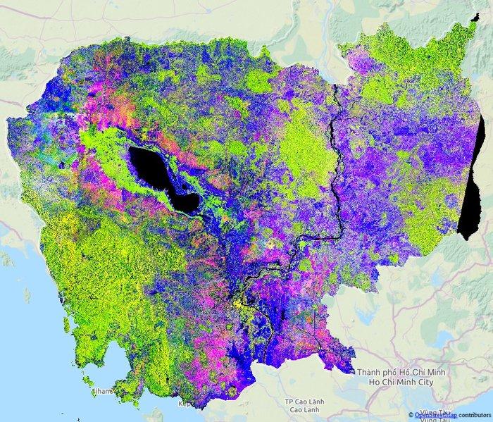 Rice extent in Cambodia