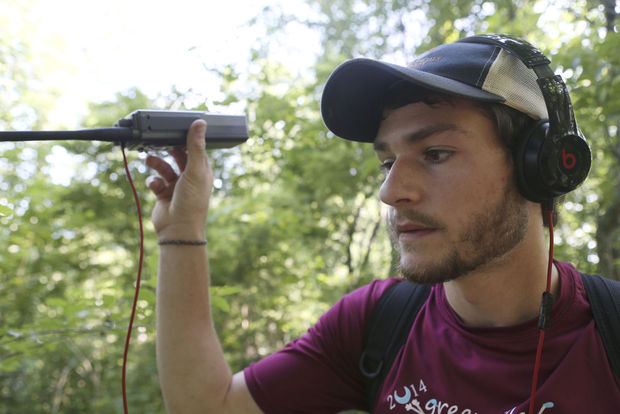 Alex Bentley, 22, listens for a soft beep in the static using radio waves to identify if the timber rattlesnake he hooked a GPS up to is nearby.