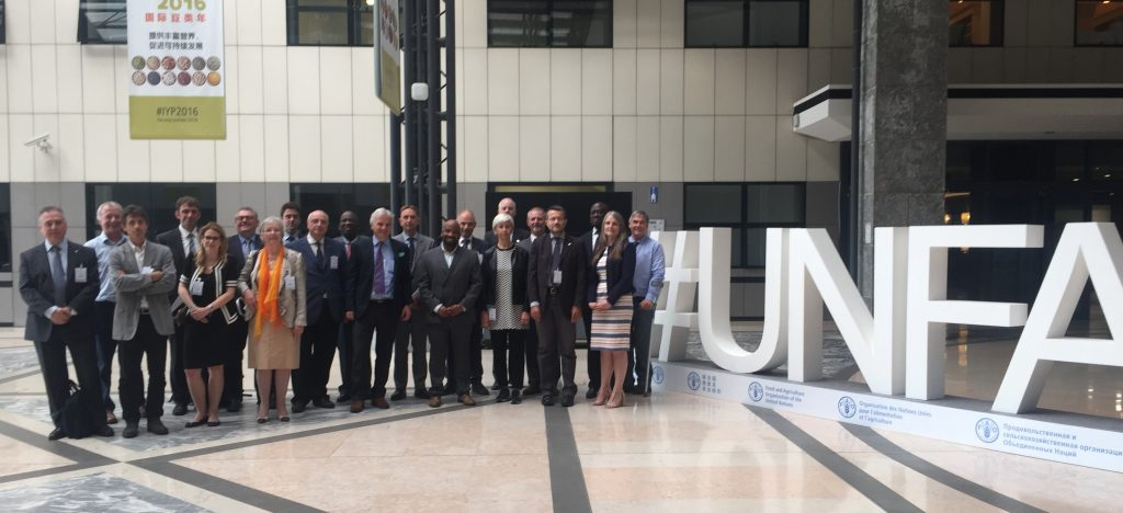 Standards bodies representing land professionals met at the Food and Agriculture Organization of the United Nations in Rome recently. More than 150 countries participated in the meet.
