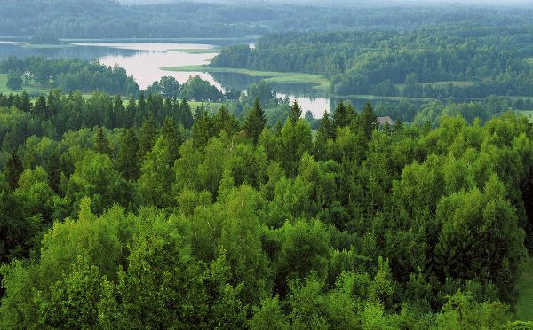 Latvia's State Forests picks Sokkia for its latest compact GNSS receivers for forest data collection.