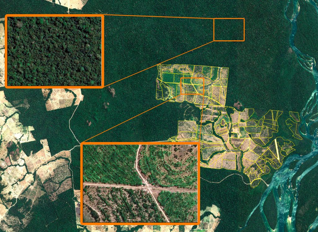 Maharashtra is using GPS and satellite mapping technology to monitor forest cover of the state