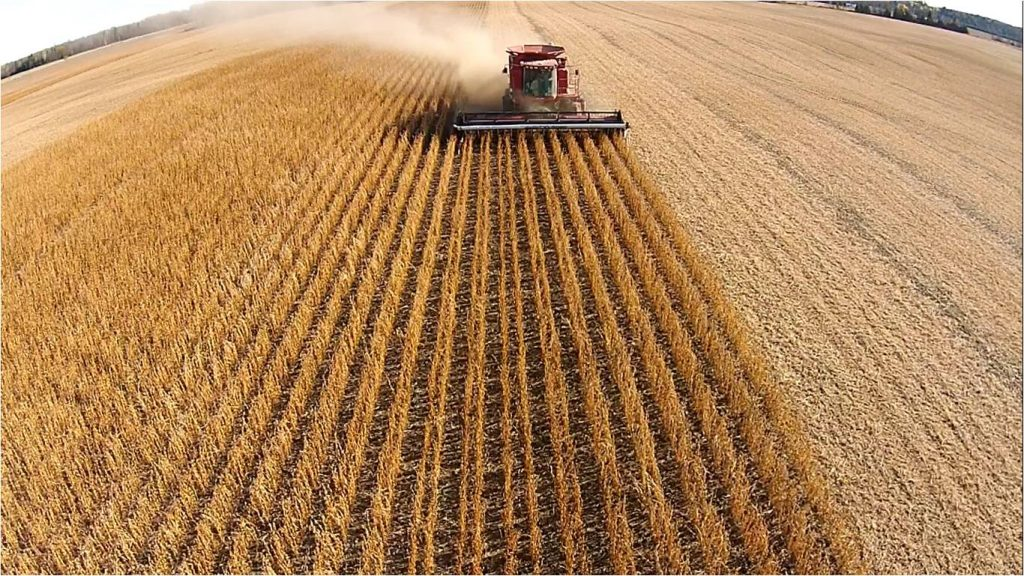 Trimble Navigation has established a dedicated business solutions group within its agriculture division.