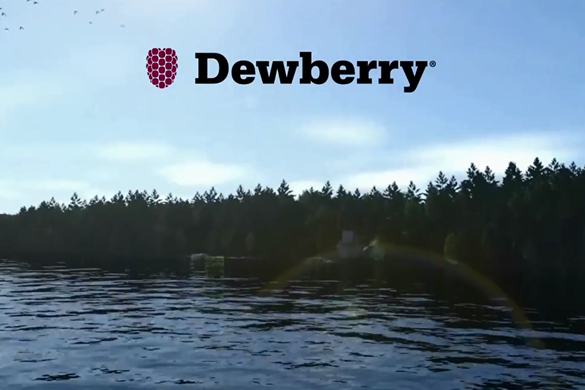 The New York City Department of Design + Construction (NYCDDC) of the US has awarded professional services firm, Dewberry, with a contract to provide design services for green infrastructure improvements in New York City.