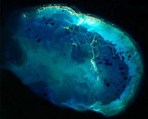 EUMETSAT is offering a free, five-week massive open online course (MOOC) for anyone curious to know more about how satellites contribute to our understanding of the oceans.