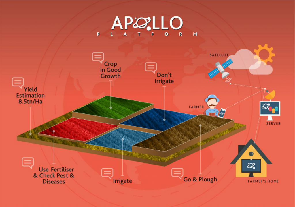 Examples of the APOLLO advisory services for small farmers (Credits: APOLLO consortium)