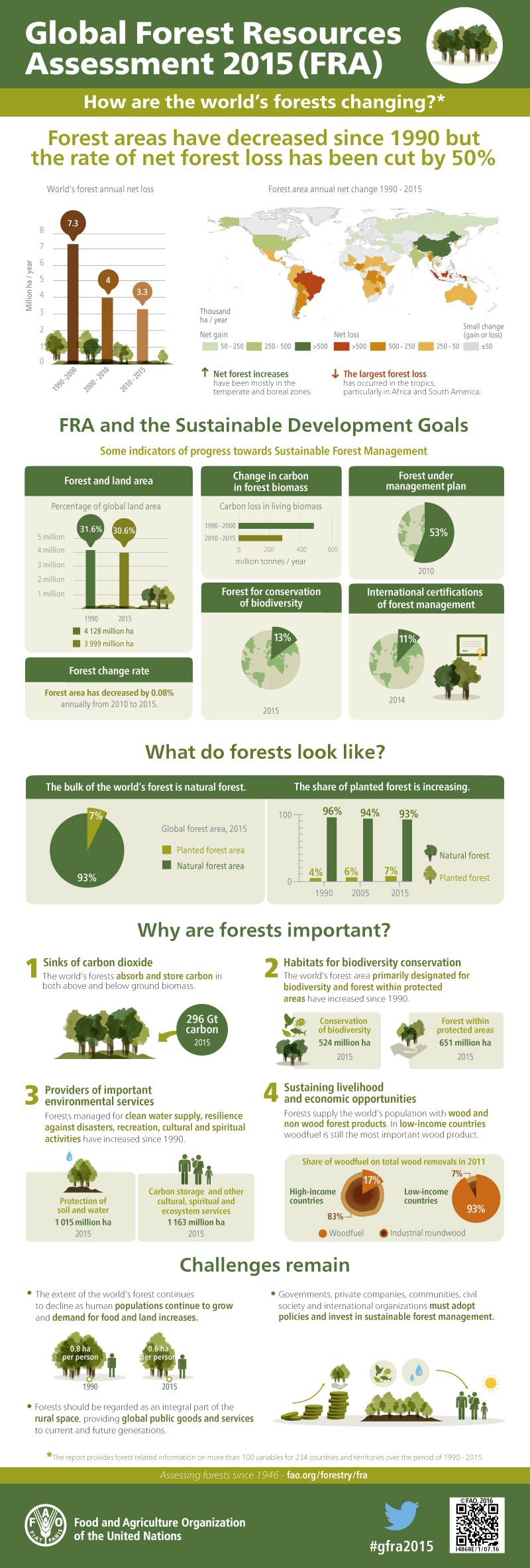 FAO forests infographic