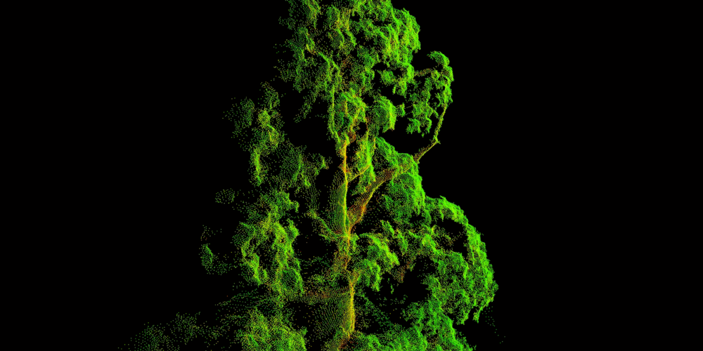As part of a joint project to keep the earth's forests healthy, Pix4D and Parrot used drones and multispectral technology to create a 3D NDVI point cloud of Whitaker's Forest in Kings Canyon National Park, California, giving researchers access to information previously hidden.