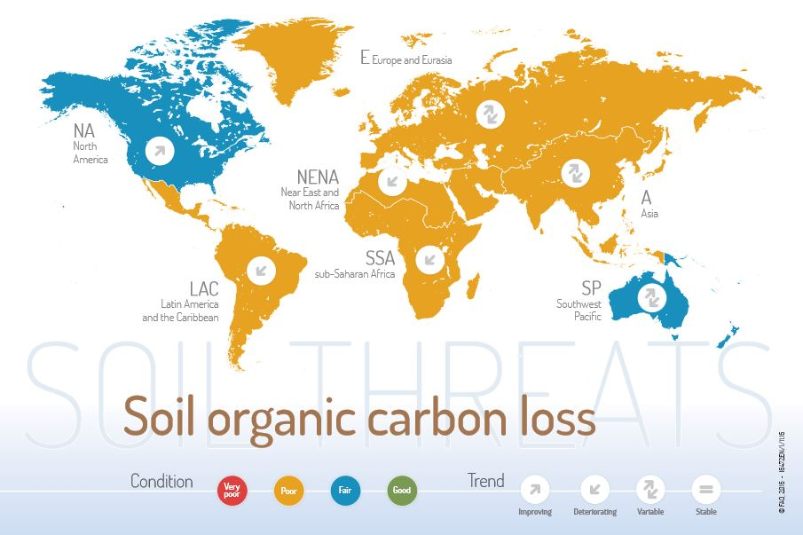 Fao publishes maps of soil threats on world soil day for Soil organic carbon