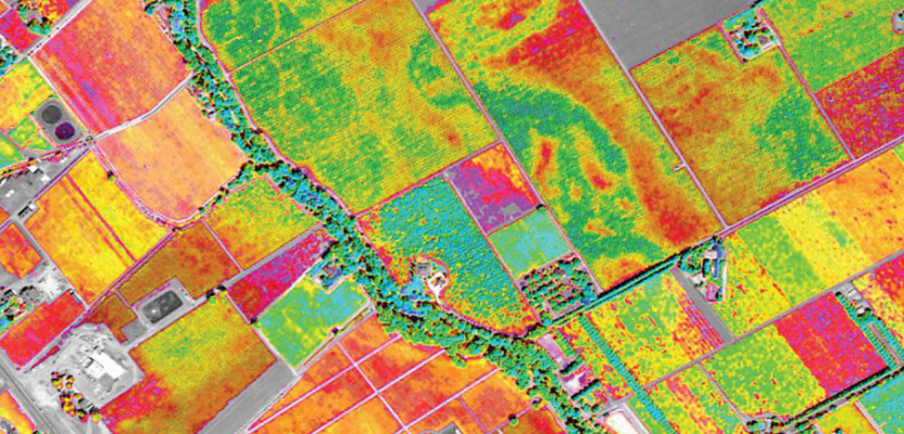 satellite_imagery_of_fields