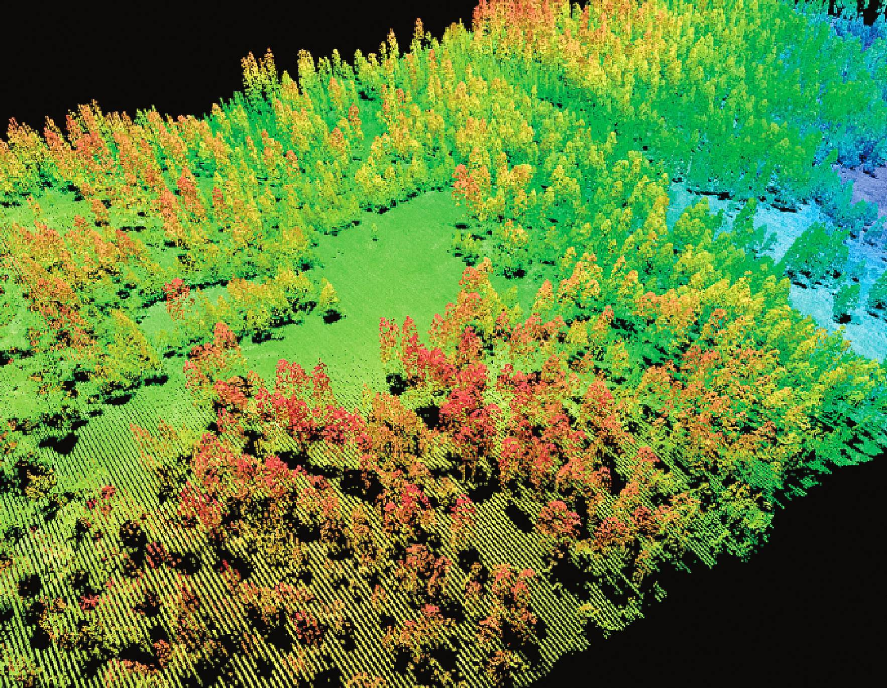 Researchers at the University of Exeter are using an airborne laser scanning technique to create detailed 3D maps that reveal the complex structures of vegetation from the tops of trees down to the ground. Image Courtsey: Sierra Nevada Adaptive Management Project