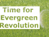 evergreen revolution