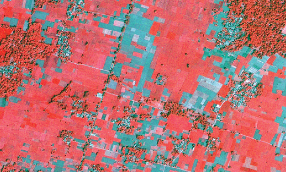 satellite imagery and crop insurance