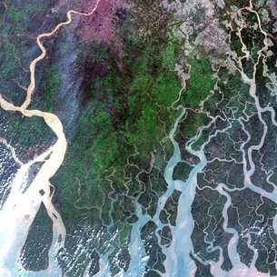 The Ganges Delta, relayed by EDRS-A